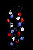 Jean Bleu Blanc Rouge 4