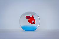 Paul Bleu blanc rouge