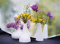 Annie 3 pots de fleurs devant un miroir