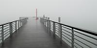 37eme - David Colignon - en plein brouillard - 42 points