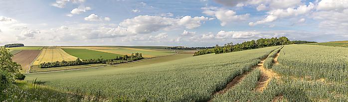 Pascal_MG_9880-Panorama